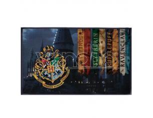 Harry Potter Hogwarts carpet