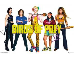 Birds Of Prey Poster Pack Group 61 X 91 Cm (5) GB eye
