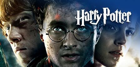 Ingrosso Harry Potter
